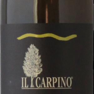 exordium_ilcarpino